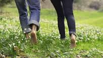 barefootgrass